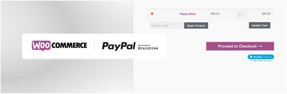 Braintree paypal plugin